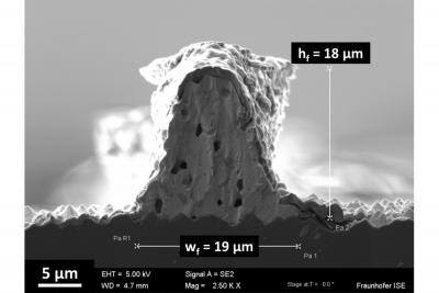 Rasterelektronenmikroskop-Aufnahme der Querschnittsfläche eines im Siebdruck realisierten Feinlinien-Kontaktfingers.